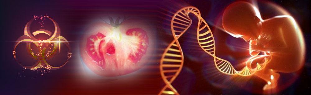基因科学与工程